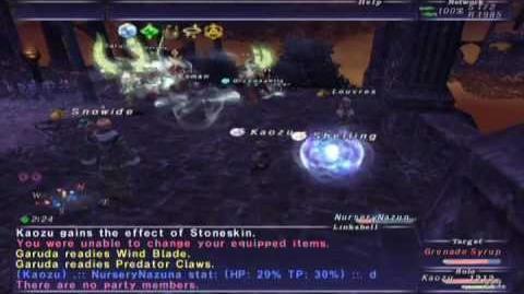 FFXI Walk of Echoes - Conflux 2 (Full Battle)