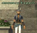 Anomaly Expert