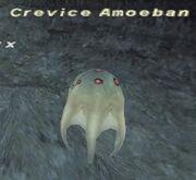 Crevice Amoeban
