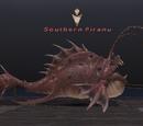 Southern Piranu
