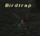 Birdtrap