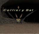 Colliery Bat