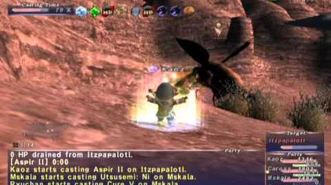 FFXI NM Saga 284 Itzpapalotl NM Full Battle, Zone Boss