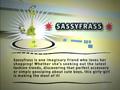 Sassyfrass info.png