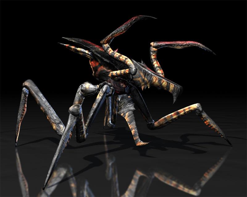 Arachnidwarrior