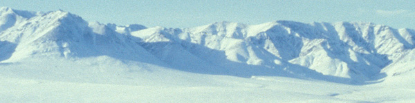 File:Habitat-arctic.jpg