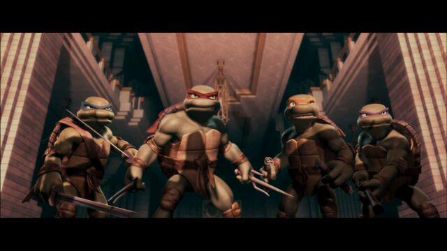 File:2508870-turtle1161.jpg