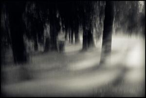 The Nameless Mist Cthulhu Mythos