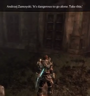 Fable3 Zelda
