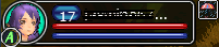 File:Party tab lvl 17 archer.png