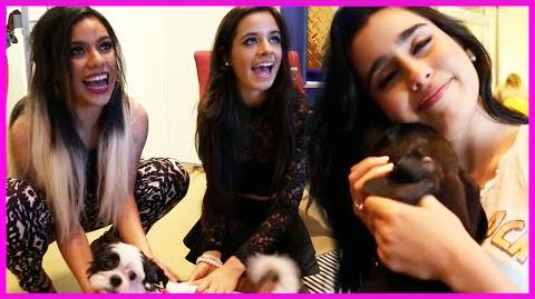 Puppy Party with Fifth Harmony - Fifth Harmony Takeover Ep
