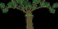 Treeid (Deliverance)