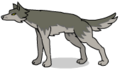 WolfD.png