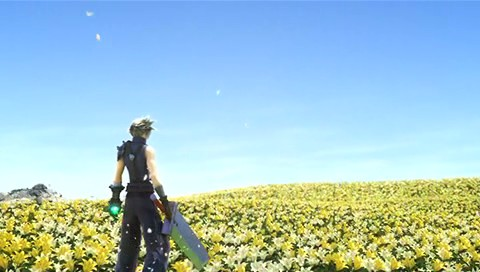File:Cloud and the Flowers.jpg