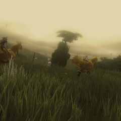 Noel and Serah riding chocobos in cloudy weather.