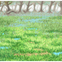 Swamp background.