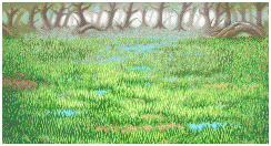 File:FFI Background Swamp.PNG
