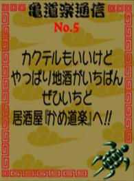 File:Turtles Paradise 5.jpg
