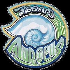 Besaid Aurochs.