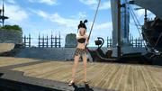 FFXIV Fishing