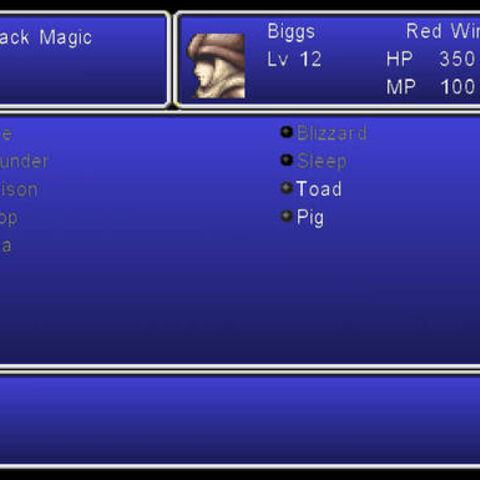 The Magic menu in the Wii version.