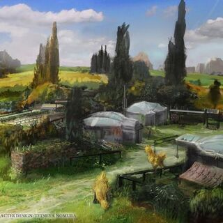 Canopus Farms artwork.