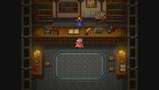 Paloom Magic Shop.PNG