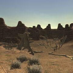 Fossils found strewn around the canyon.