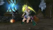 FFXIV Witch's Broom