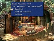 Black mage village shop