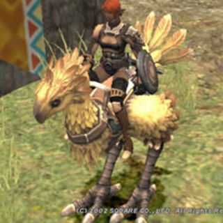 Riding a chocobo.
