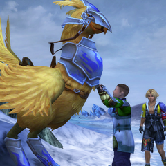 Clasko talking to a chocobo in <i>Final Fantasy X</i>.