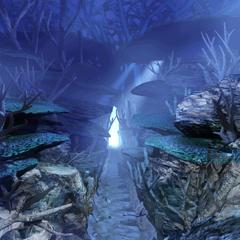 Path to waterfall room.
