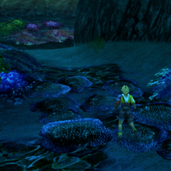 Besaid Valley (underwater).
