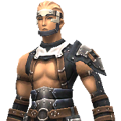Carapace Harness set (Lv45)