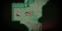 Marsh Cave