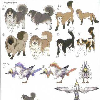 Animals of Cocoon.