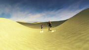 FFX Bikanel Desert