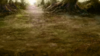 Battleback forest b