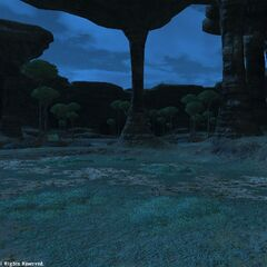 The lower part of Western Thanalan at night.