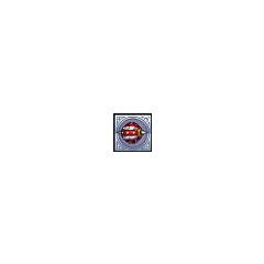 Water Ball Rank 5 icon.