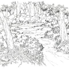 Concept art of Forest of Solitude.