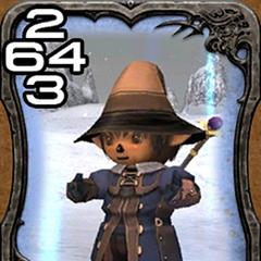 <i>Final Fantasy XI</i>