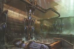 Fifth Ark