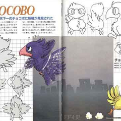 Artwork for black and yellow chocobos.