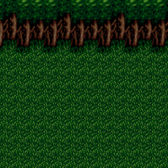 Restored forest (Foresta Region).