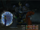 FFX Protect