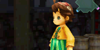 List of Final Fantasy Crystal Chronicles: Ring of Fates armor