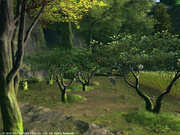 FFXIV Greatloam Orchard