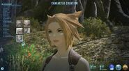 FFXIV Miqote ARR Character Creation